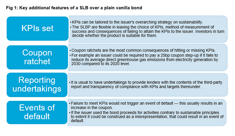Key additional features of a SLB over a plain vanilla bond (chart)