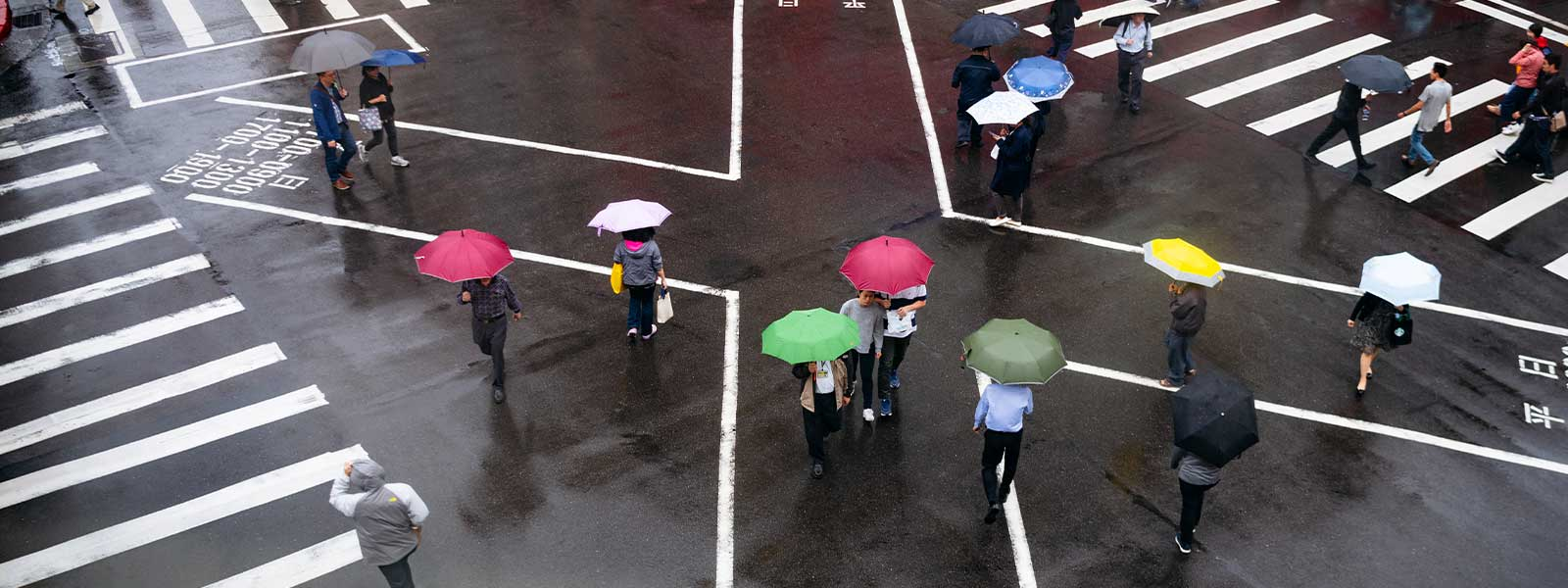 people with umbrellas on Taipei crosswalk