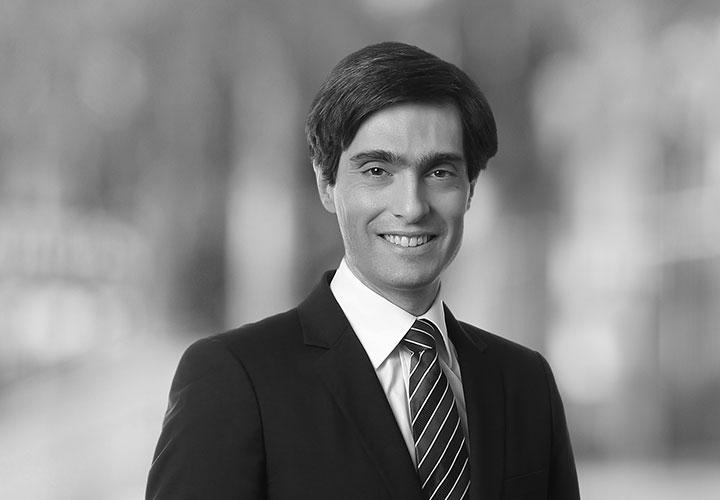 Franck De Vita