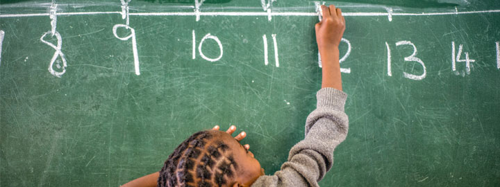 The role of the courts in public education