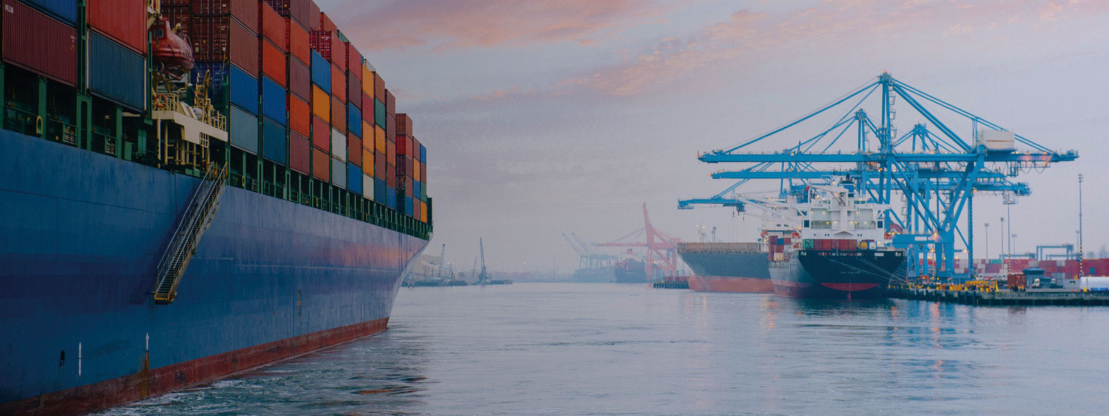 Weathering the storms: Investment and supply chain strategies for a volatile int