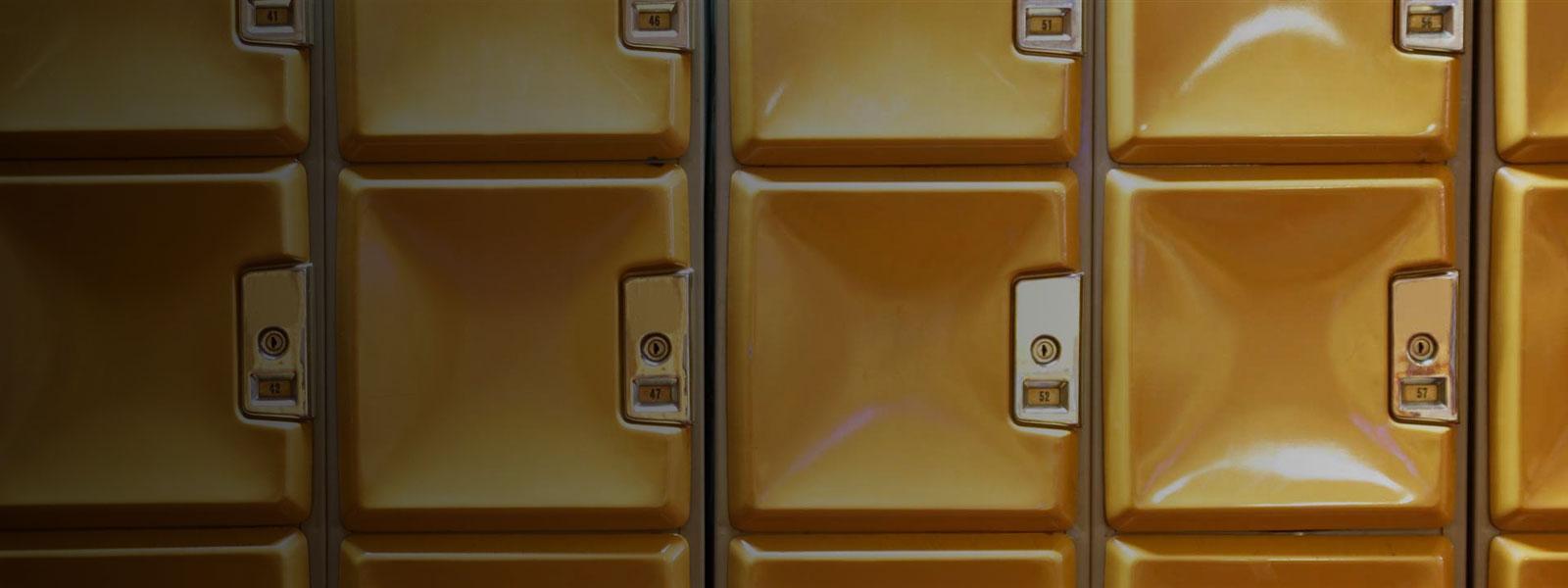 EU General Data Protection Regulation (GDPR): EU's new data protection law