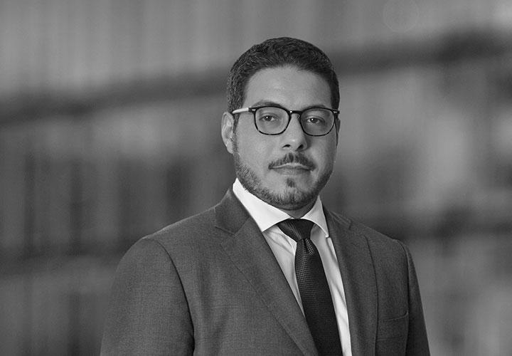 Hamad Al-Hoshan