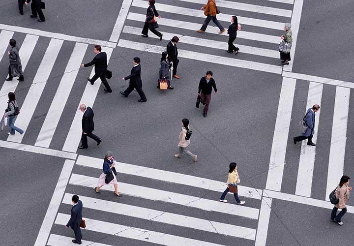 Employment, Compensation & Benefits